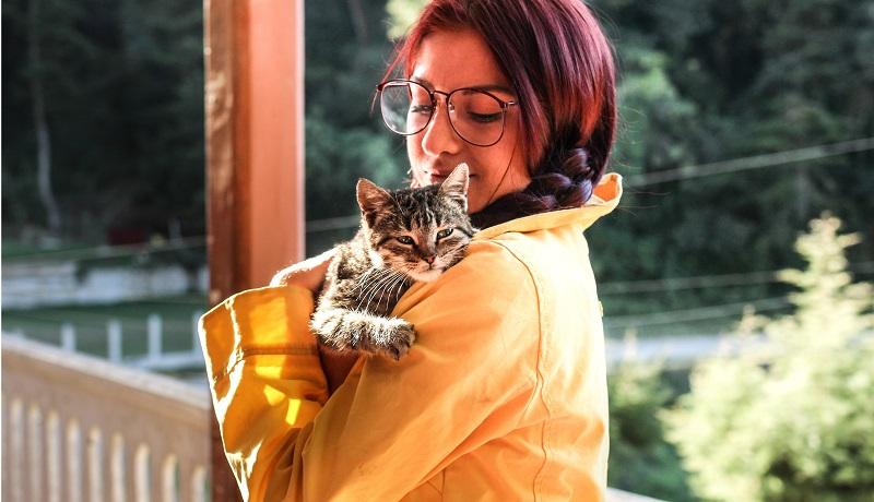 resgate-de-animais-pos-desastre-requer-preparo-disciplina-e-muito-cuidado